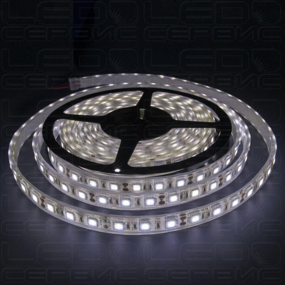 Светодиодная лента LS60 5050 IP68 холодный свет Premium