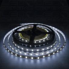 Светодиодная лента LS60 5630 IP20 холодный свет