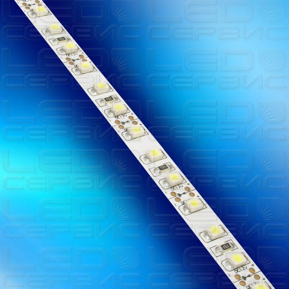 Светодиодная лента LS120 3528 IP20 холодный свет