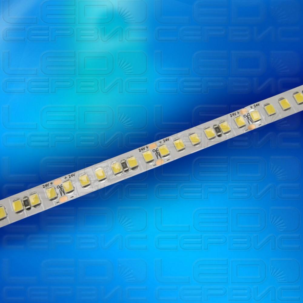 Светодиодная лента LS192 2835 24V IP20 нейтральный свет Premium