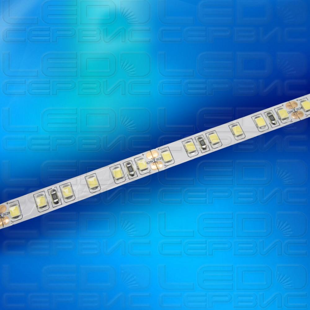 Светодиодная лента LS192 2835 24V IP20 холодный свет Premium