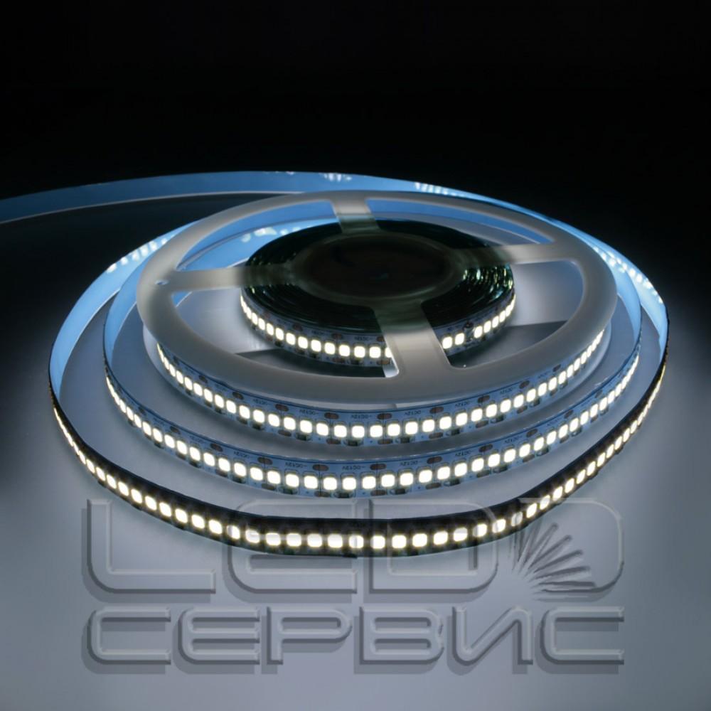 Светодиодная лента LS240 2835 IP20 холодный свет Premium